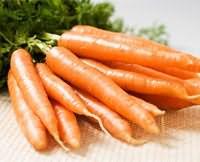 Морковь. Полезные и целебные (лечебные) свойства моркови. Чем полезна морковь. Лечение морковью