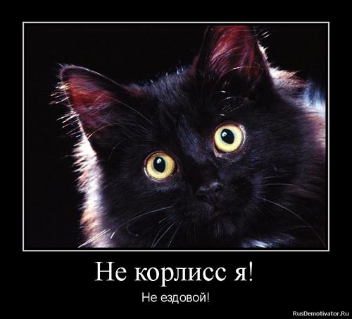 http://s5.hostingkartinok.com/uploads/images/2013/03/8c4873a4d209480409c6ebd7a315f272.png