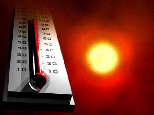 Влияние температуры на жизненные процессы