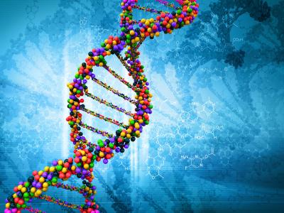 Генетика и проблемы человека