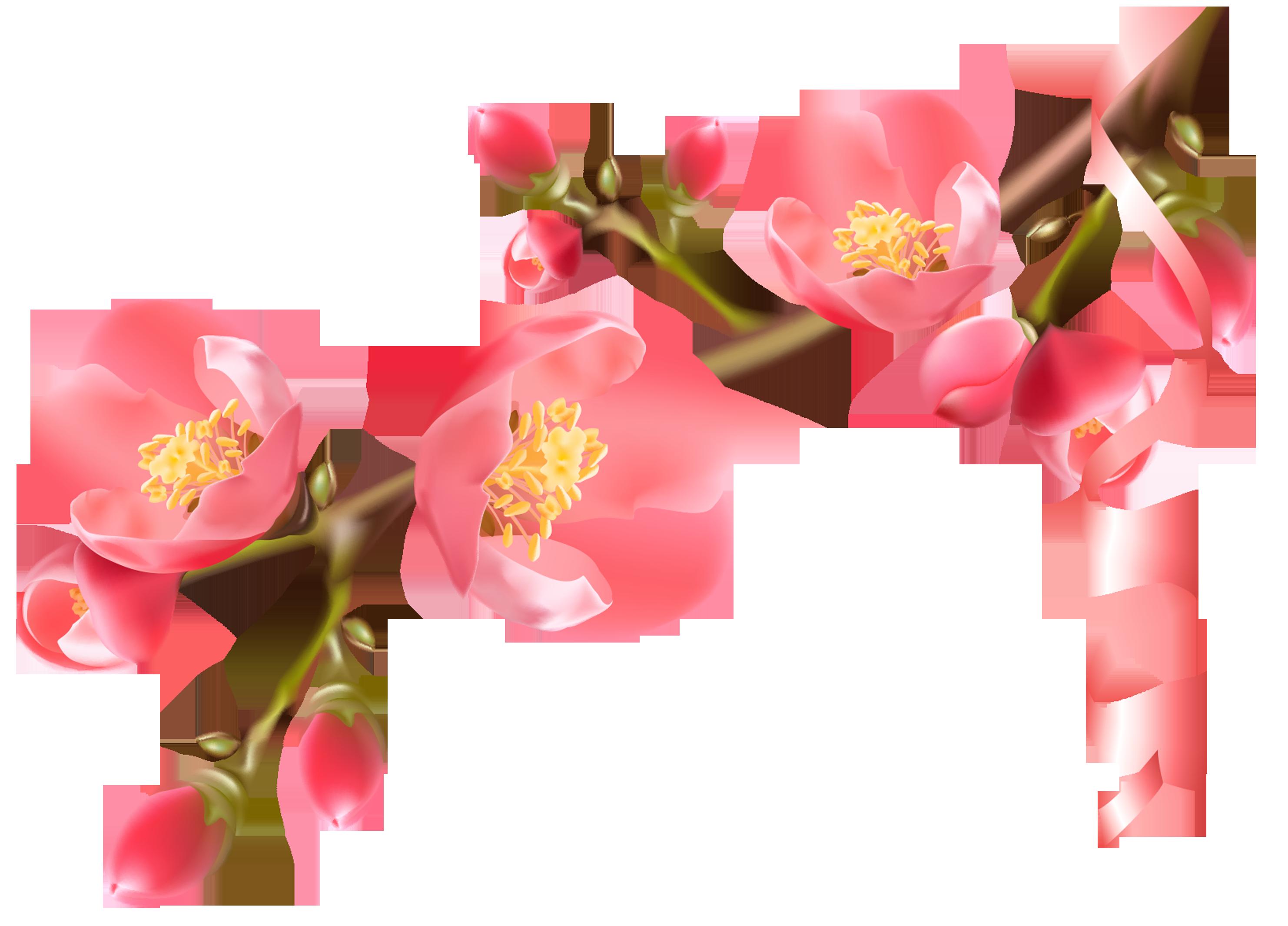 игрушечных снеговика картинка веточки цветка однолетние