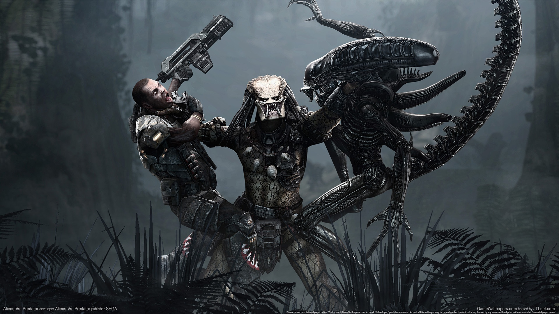 wallpaper_aliens_vs_predator_05_1920x1080.jpg