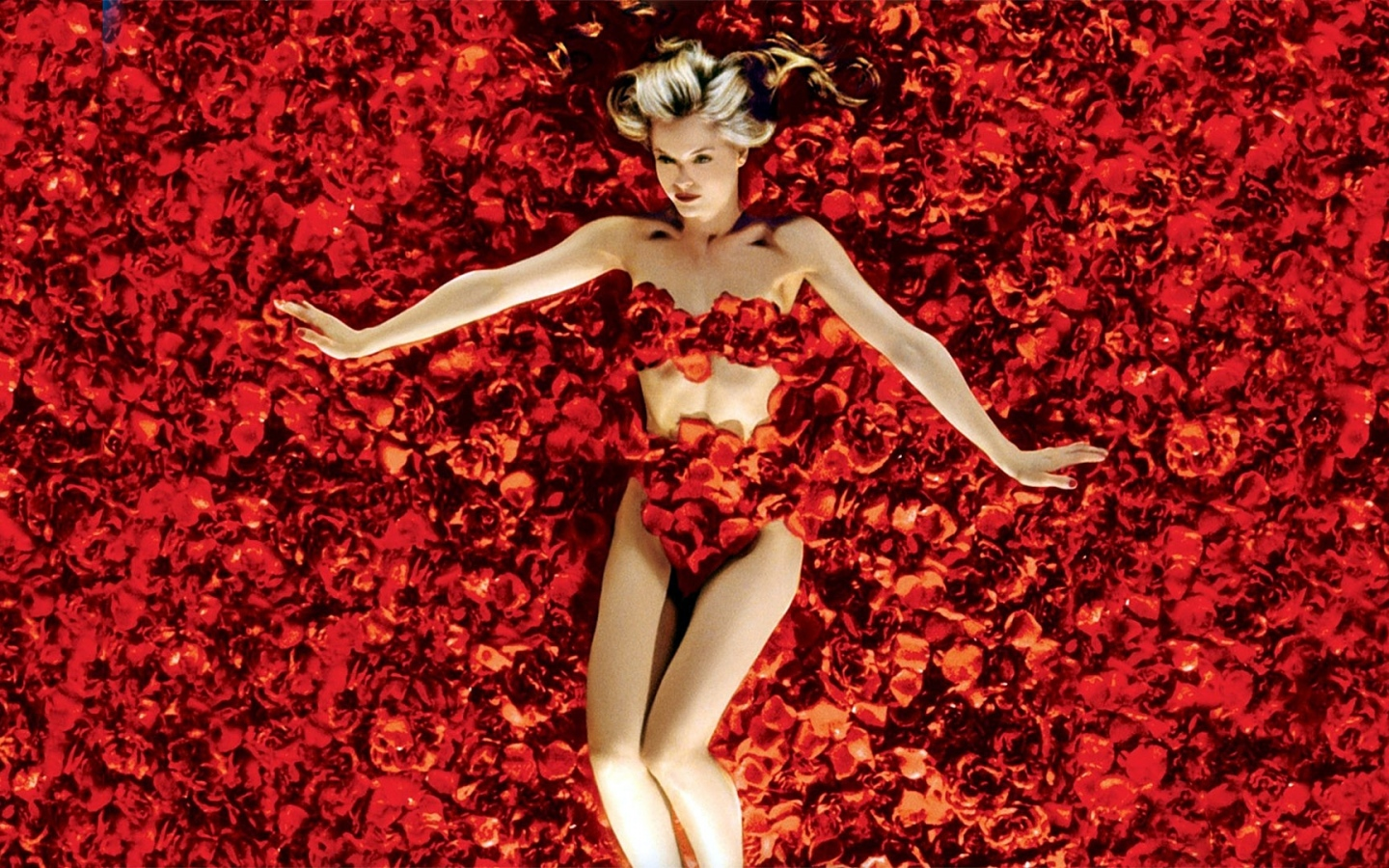 a plot review of the american movie american beauty