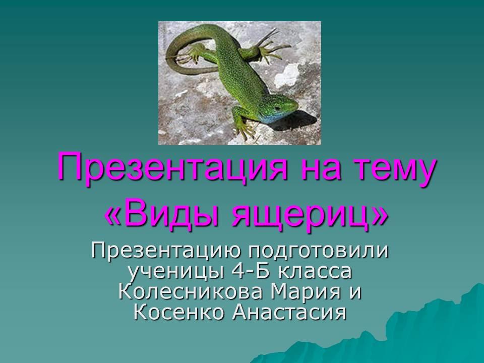 Виды ящериц.jpg